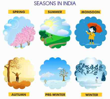 Seasons Name of the Year for Kids
